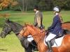 gonitwy-koni