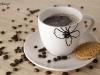 filizanka-kawy-zdjecia